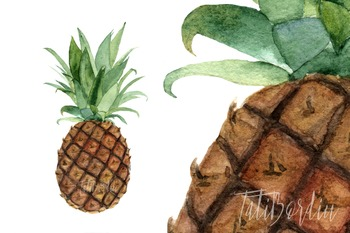 Watercolor Pineapple Clipart & Print