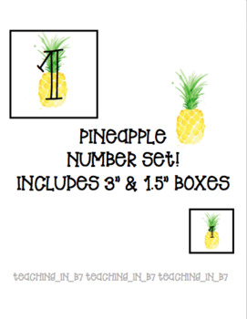 Watercolor Pineapple Number Set