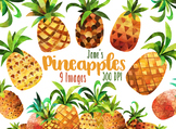 Watercolor Pineapples Clipart