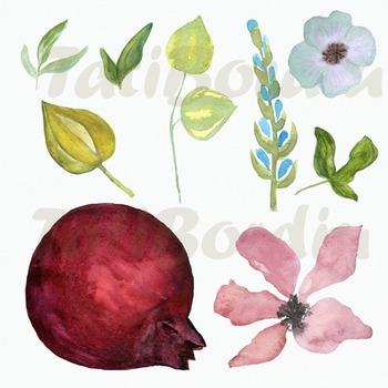 Watercolor Pomegranate Clip Art