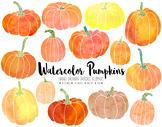 Watercolor Pumpkin Clipart. Hand Drawn Thanksgiving, Fall,