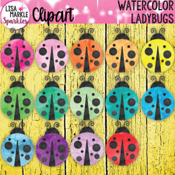 Watercolor Rainbow Spring Ladybug Clipart