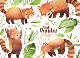 Watercolor Red Pandas Clipart