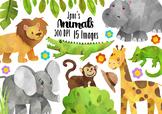 Watercolor Safari Clipart
