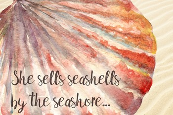 Watercolor Seashell Collection - 8 Png