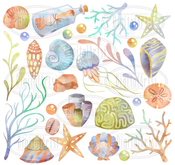 Watercolor Seashells Clipart