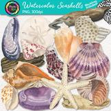 Watercolor Shells Clip Art {Hand-Painted Seashells, Starfi