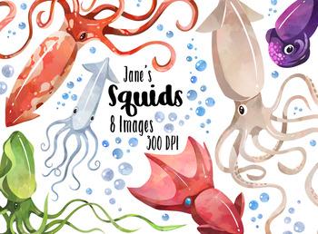 Watercolor Squids Clipart Download - Cute Cuttlefish - Sea Creatures - Kraken -