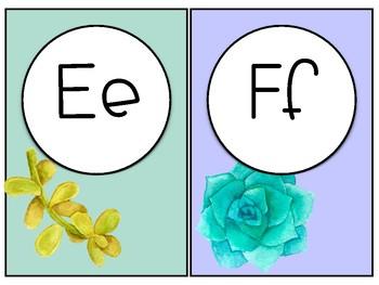 Watercolor Succulent Themed Alphabet Line