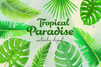 Watercolor Tropical Leaves Watercolor Palm Leaf Monstera Banana Tree Leaves Watercolor plants watercolor leaves simple watercolor tattoo watercolor watercolor animals watercolor tropical leaf palm print, showing various tropical plants together in one poster. watercolor tropical leaves watercolor palm leaf monstera banana tree leaves