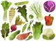 Watercolor Vegetables Clipart
