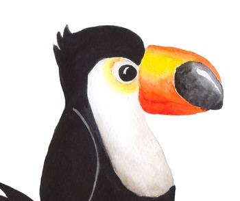 Watercolor birds clipart, Tropical bird clipart, Watercolor bird