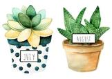 Watercolour Succulent Birthday Chart