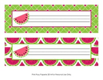 Watermelon Classroom Decor Desk Name Plates