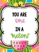 Watermelon Classroom Theme: Editable with Matching Teacher Binder