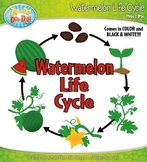Watermelon Life Cycle Clipart {Zip-A-Dee-Doo-Dah Designs}