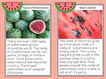 Watermelon Life Cycle - Nonfiction Writing, Math, and Science Unit