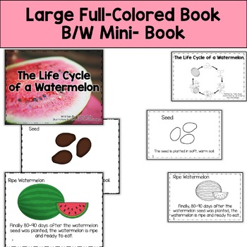 Life Cycle of a Watermelon  with Colored book, mini book, writing, and more.