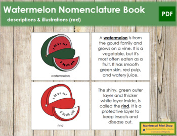 Watermelon Nomenclature Book (Red)