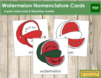 Watermelon Nomenclature Cards (Red)