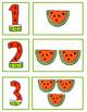 Watermelon Number Card Match 1-10