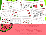 Watermelon PreK Printable Learning Pack Bundle
