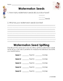 Watermelon Seeds - Count & Measure