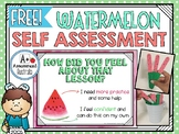 Watermelon Self Assessment FREEBIE