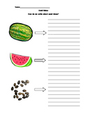 Watermelon Small Moments Graphic Organizer with Lines