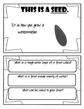 Combined Speech and Language: Watermelon