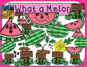 Watermelon Summer Life Cycle Clip Art by Kid-E-Clips Personal and Commercial Use