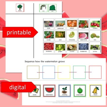 Watermelon Unit for Special Education