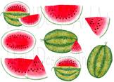 Watermelon clipart, Watercolor melon clipart, Watermelon clip art