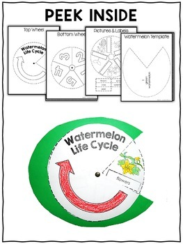 Watermelon Life Cycle Craft Activity