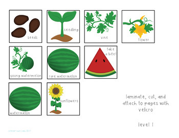 Watermelons: An Interactive Comprehension Book