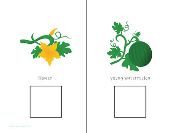 Watermelons Interactive Comprehension Book