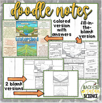 Watershed Doodle Notes  NGSS