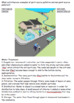 Watershed and Water Pollution Notes (accompanies PowerPoint)