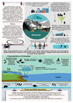 Watersheds, River Basins, and Estuary Infographic