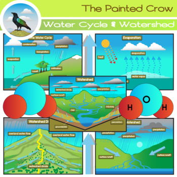 Watersheds + The Water Cycle Clip Art Set
