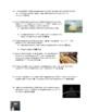 Wave Speed Worksheet