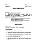 Waves Rotational Lab