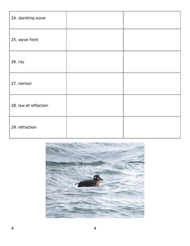 Waves Vocabulary