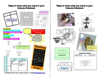 Ways to Show What You Know in your Science Notebook