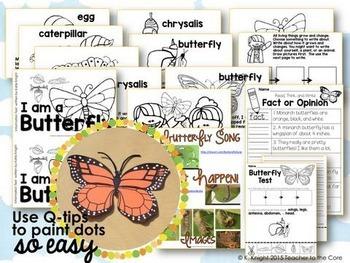 Bugs Reading, Writing, Tests, Art