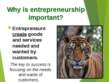 We Bought a Zoo - A study in courage, passion, and perseverance.