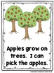 We Can Grow Our Own Food  (A Sight Word Emergent Reader and Teacher Lap Book)