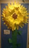 "We put the ""sun"" in Sunflower"