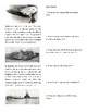 Weapons of World War I Reading Activity {English Version}