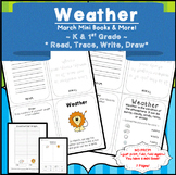 Weather Chart for Circle Time | Weather Graph | Weather Activities